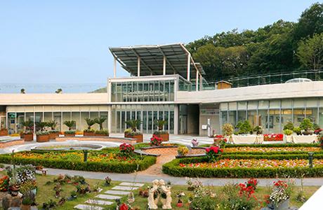식물원 사진