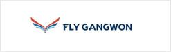 fly gangwon
